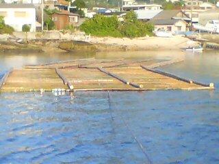 筏2台できた